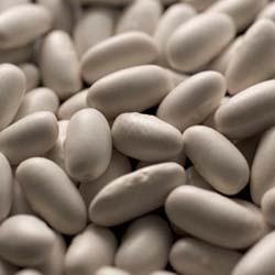 White Alubias Beans